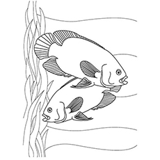 230x230 Top 10 Free Printable Tropical Fish Coloring Pages Online