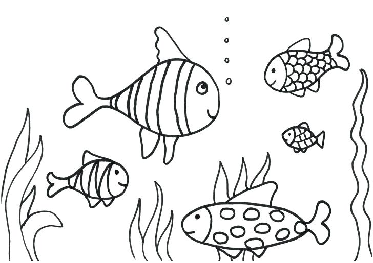 728x515 Tropical Fish Coloring Pages Coloring Pages Printable Fish