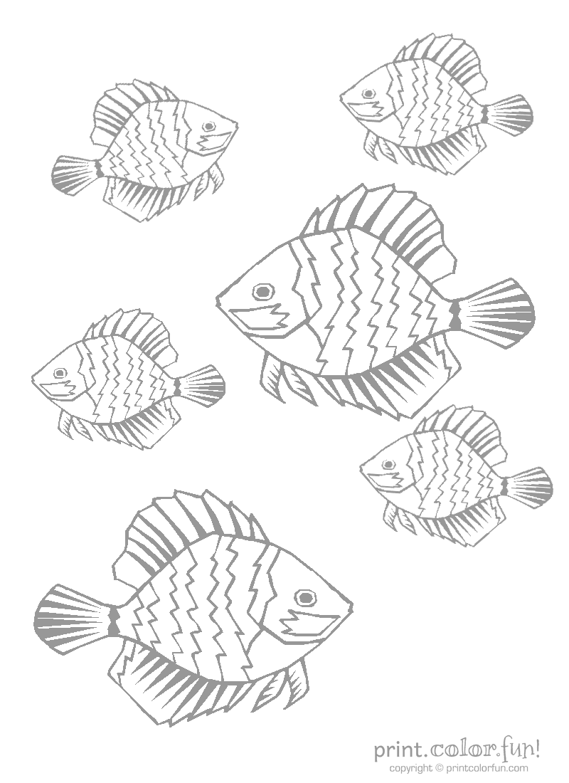 800x1100 Tropical Fish Coloring Page