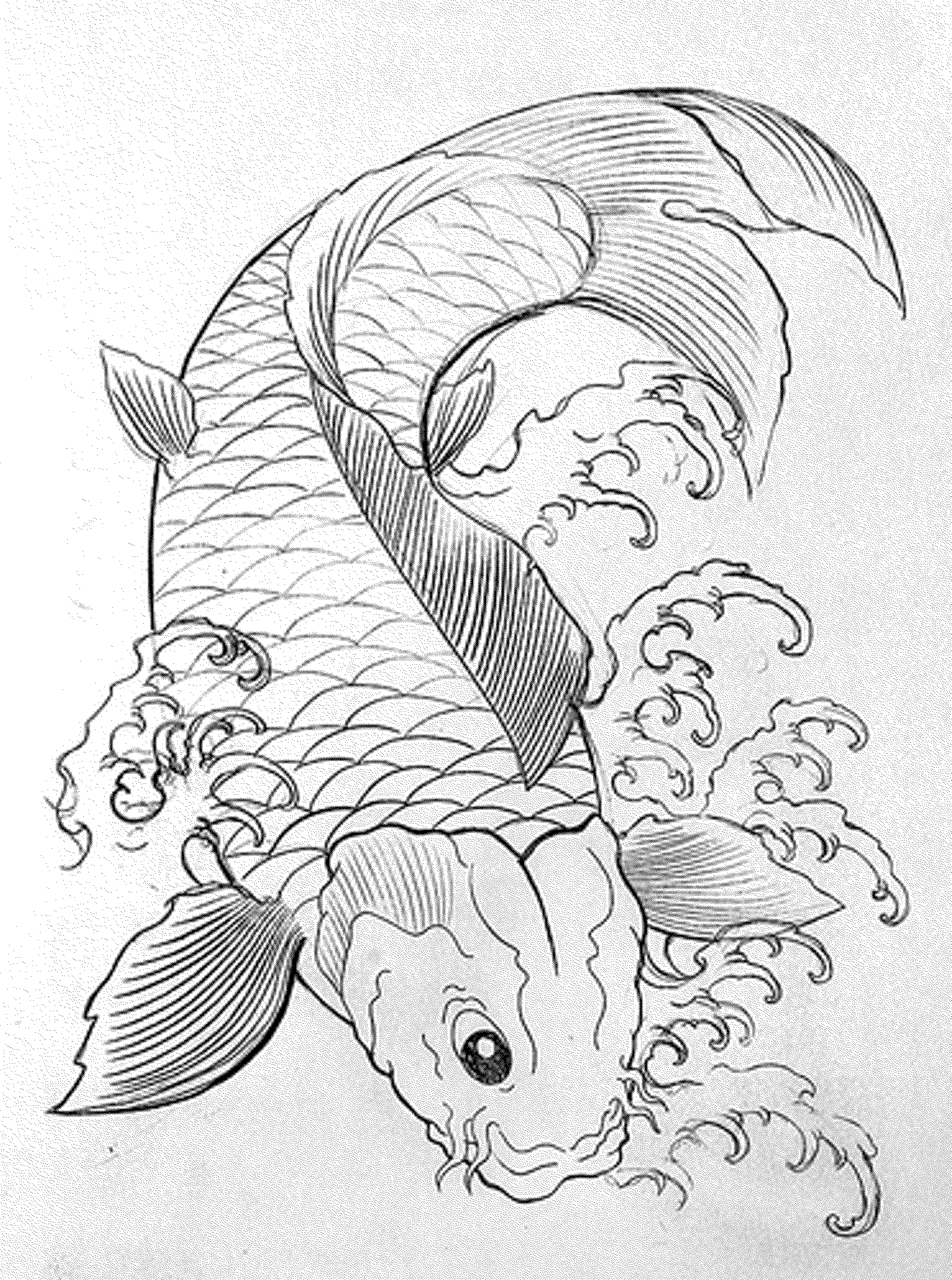 Tropical Fish Drawing at GetDrawings.com | Free for personal use ...