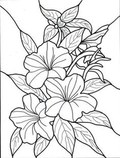 236x311 Flower Coloring Page Coloring Pages Flower