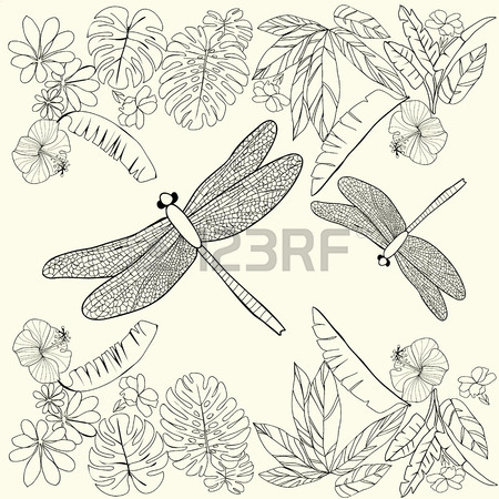 450x450 Hand Drawn Tropical Flowers, Leaves And Dragonflies. Coloring