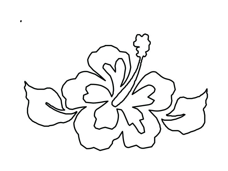 736x552 Hawaiian Flowers Coloring Pages Flower From Coloring Pages Flower