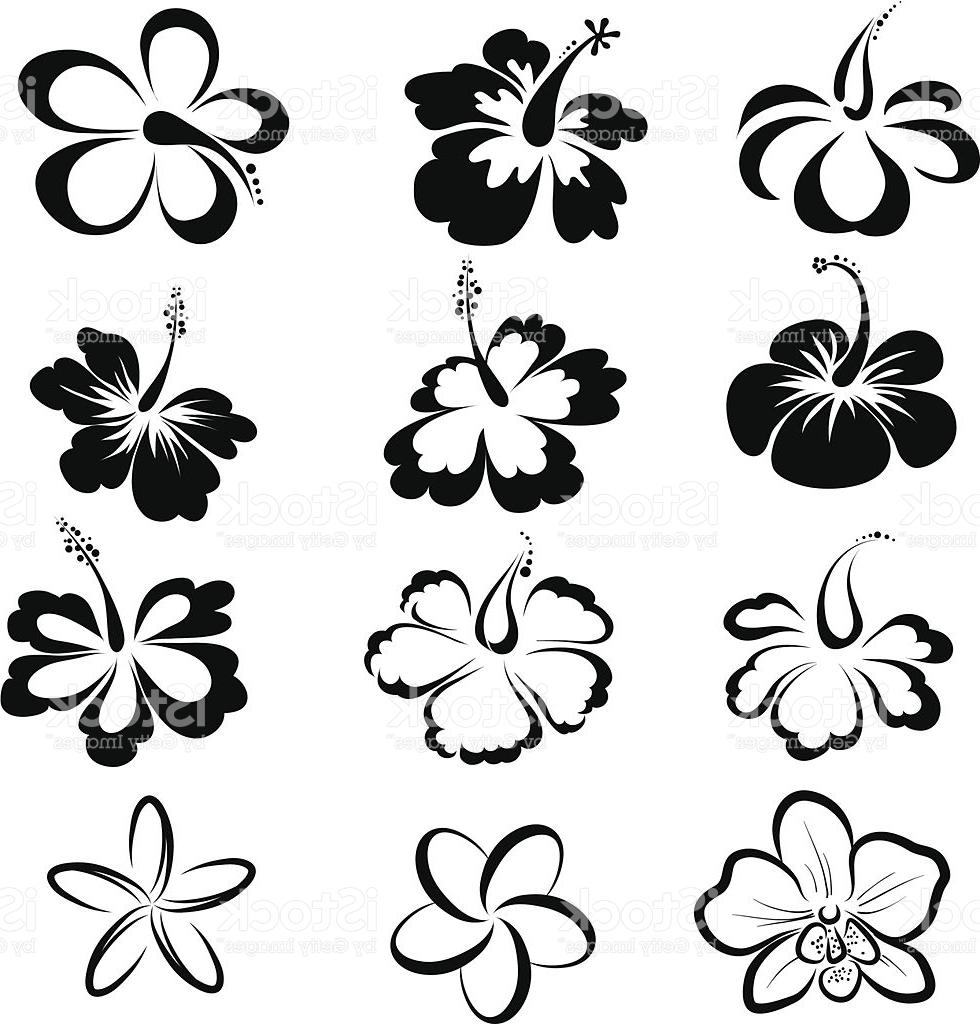 980x1024 Top 10 Black And White Drawings Of Tropical Flowers Vector Cdr