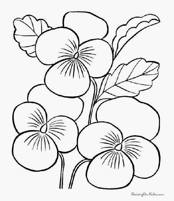 582x672 Tropical Rainforest Flowers Coloring Pages Coloring Page For Kids