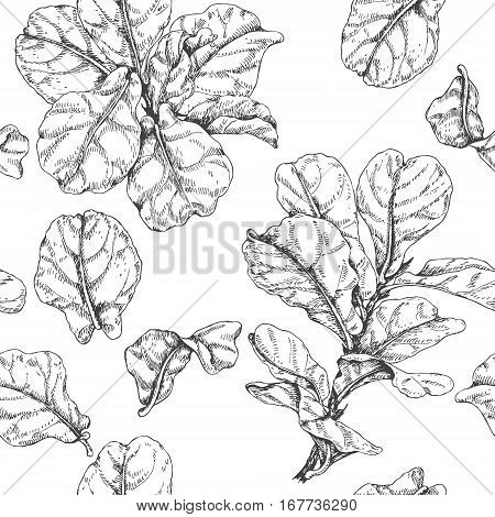 450x470 Hand Drawn Branches Leaves Vector Amp Photo Bigstock