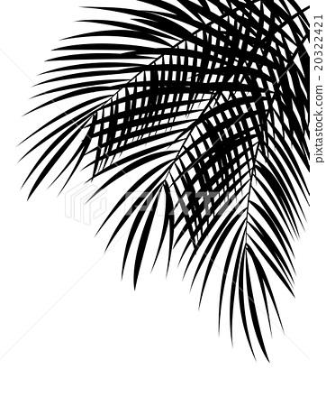362x450 Palm Leaf Vector Background Illustration