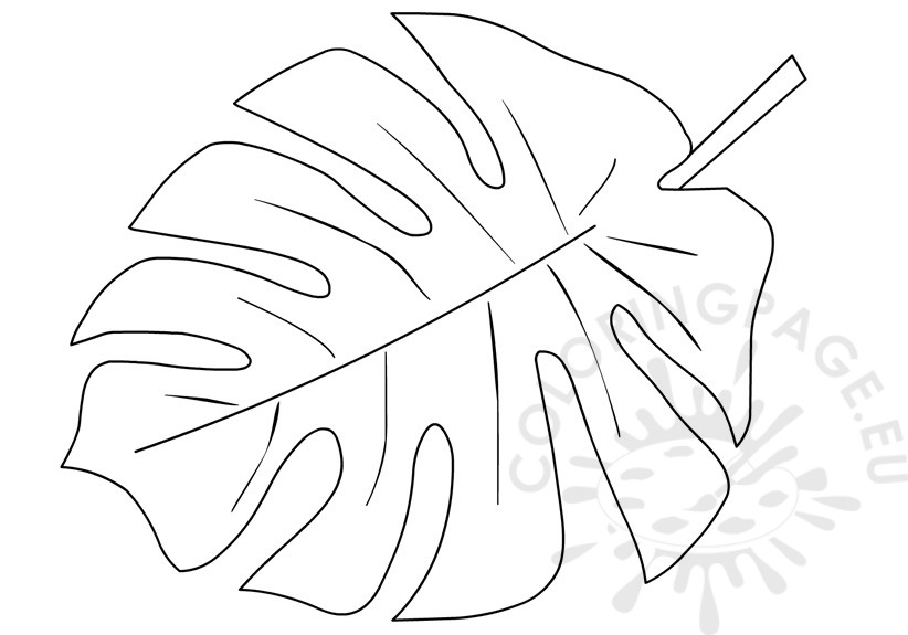 rainforest leaves coloring pages tropical leaf drawing at free for