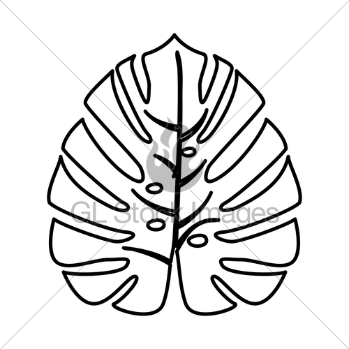 500x500 Tropical Leaf It Is Black Icon Gl Stock Images