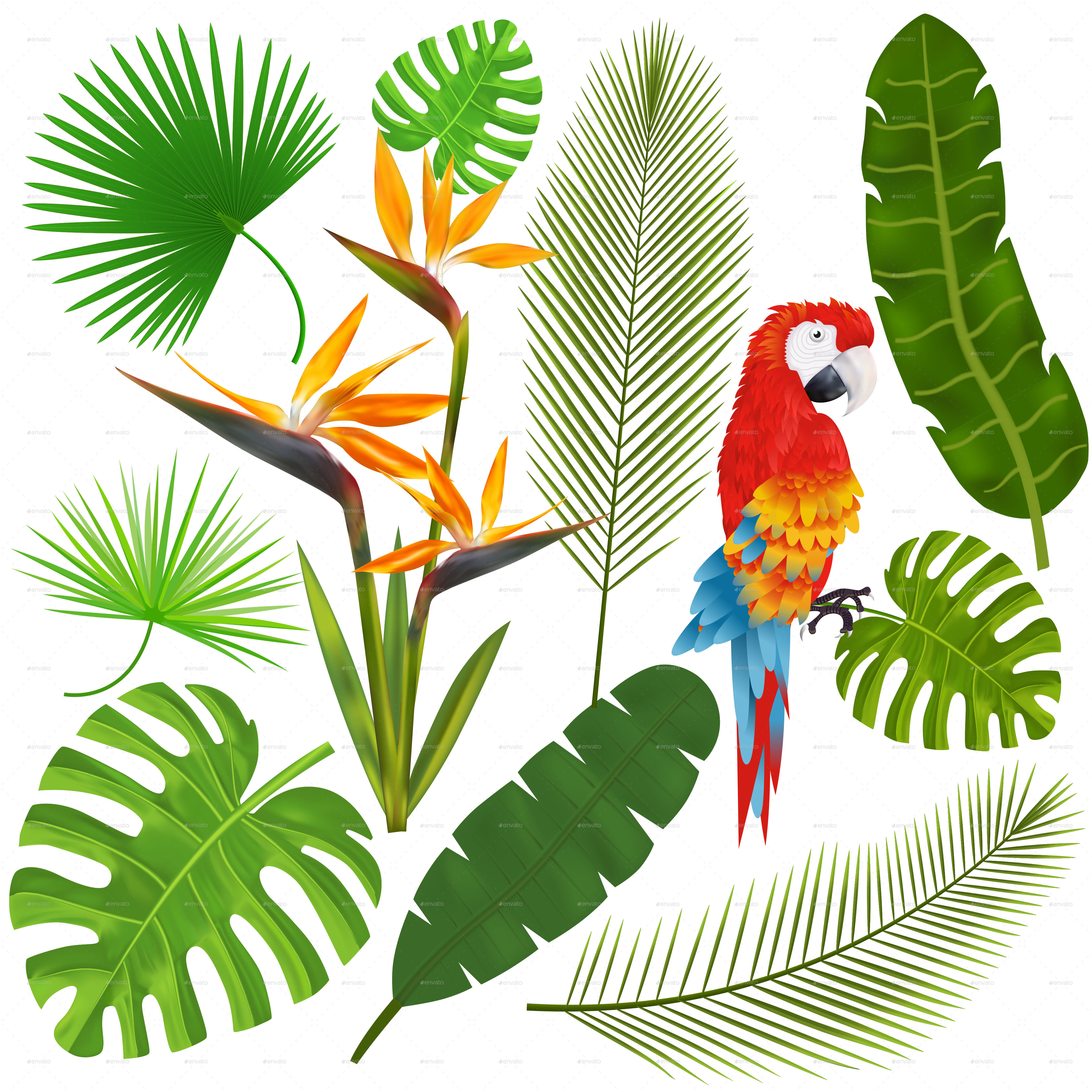 4167x4167 Tropical Leaves, Flowers And Macaw Vector By Yayasya Graphicriver