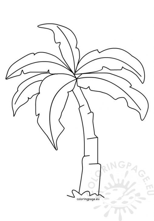 508x726 Palm Tree Leaf Template
