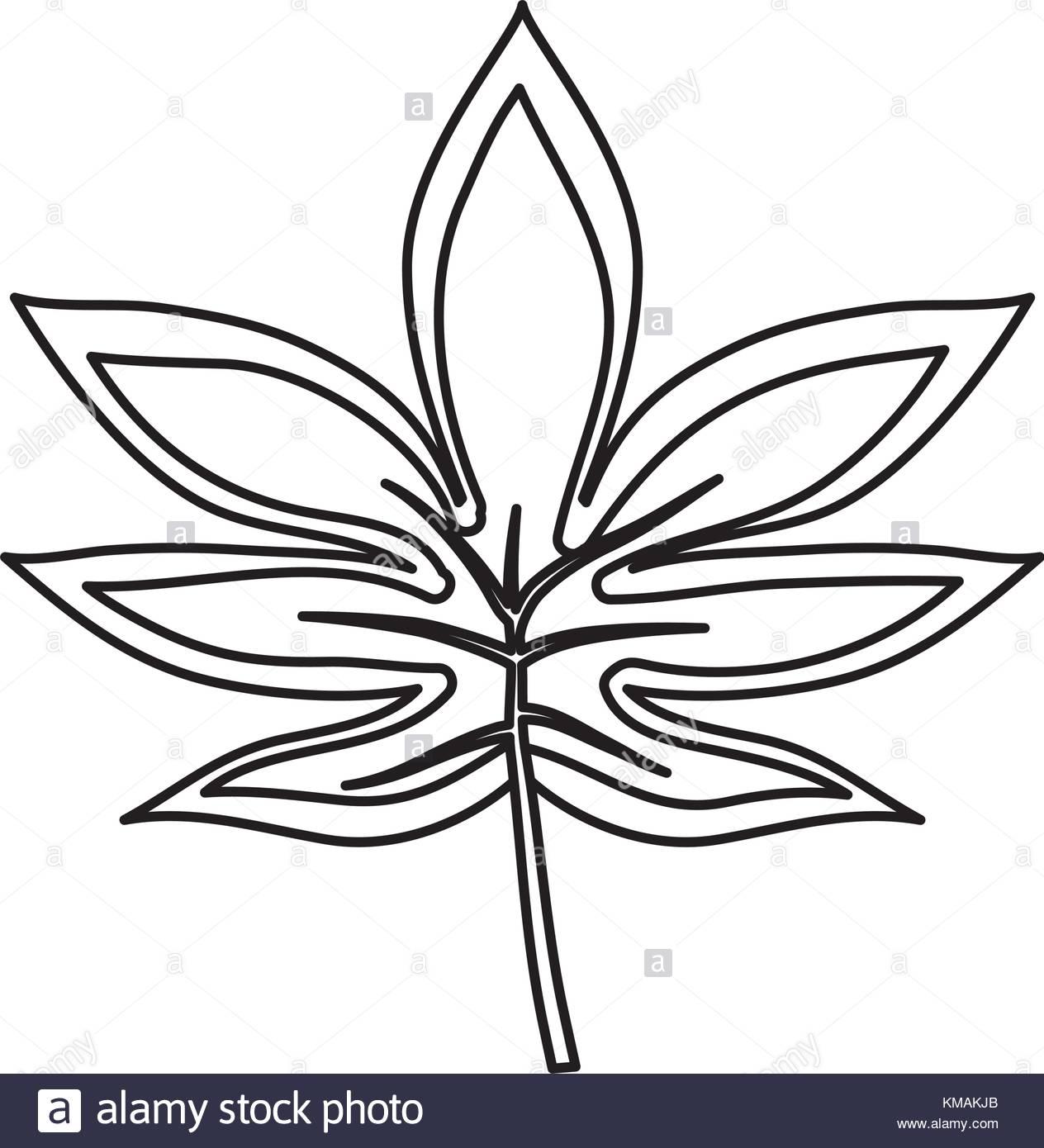 1264x1390 Tropical Leaves Design Stock Vector Art Amp Illustration, Vector