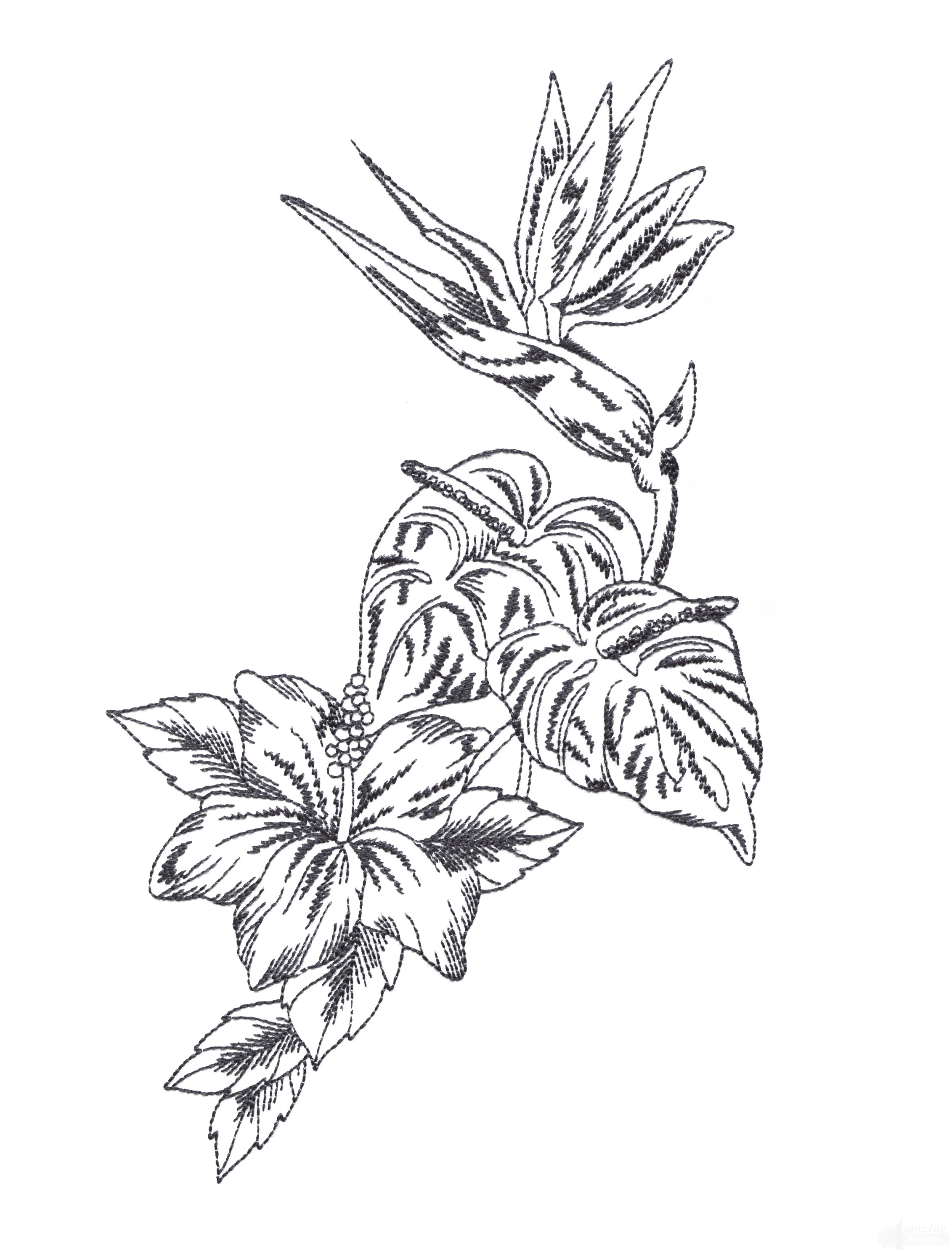 2263x2978 Tropical Floral Sketch Embroidery Design