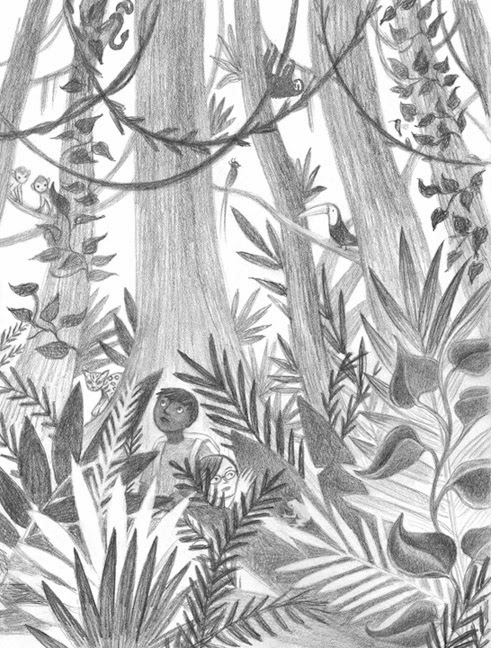 491x648 Tropical Rainforestnimals Drawing Rainforest Drawing Drawing