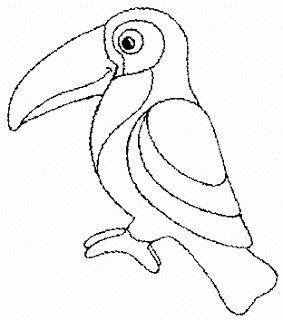 Tucan Drawing
