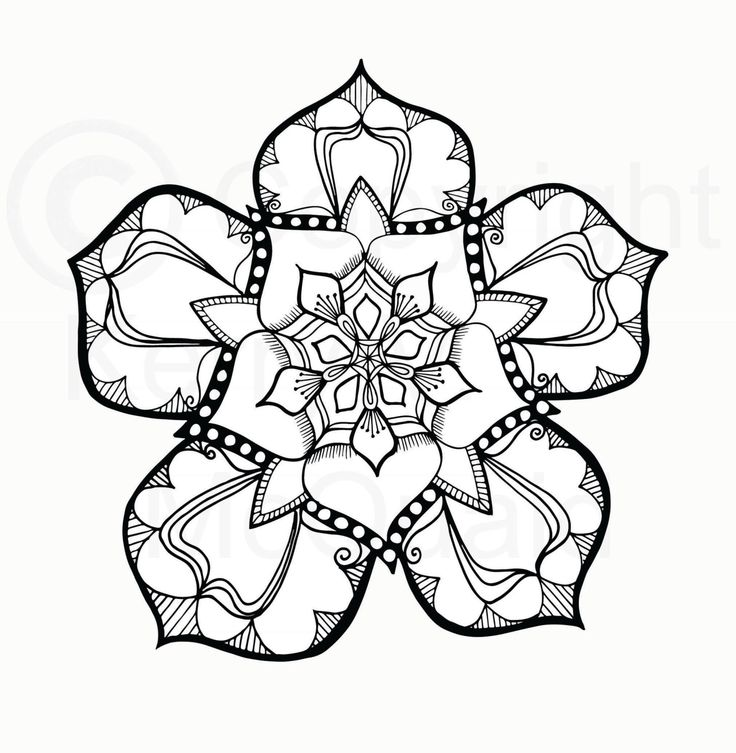 Tudor Rose Drawing