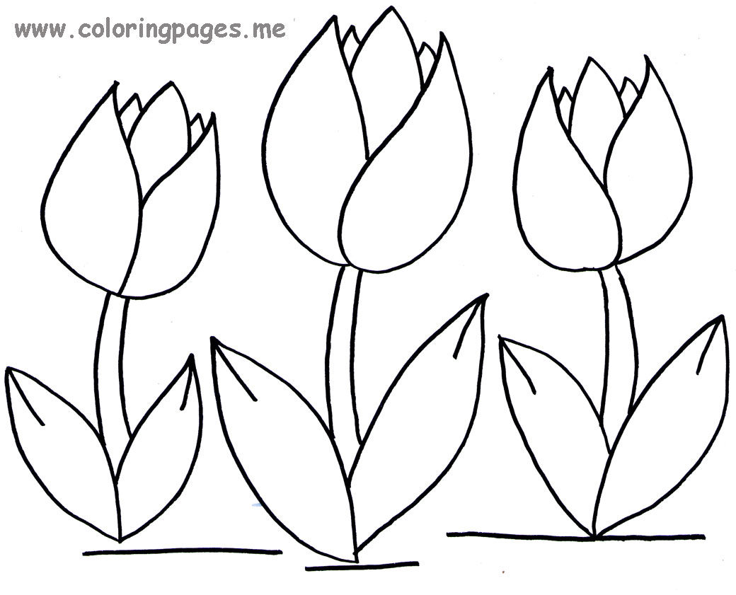 1040x841 Tulips Coloring Pages