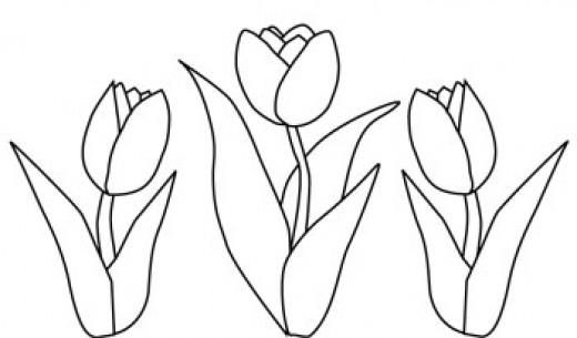 520x305 Tulip Flower Coloring Page Applique Bloemen, Bladeren, Bomen