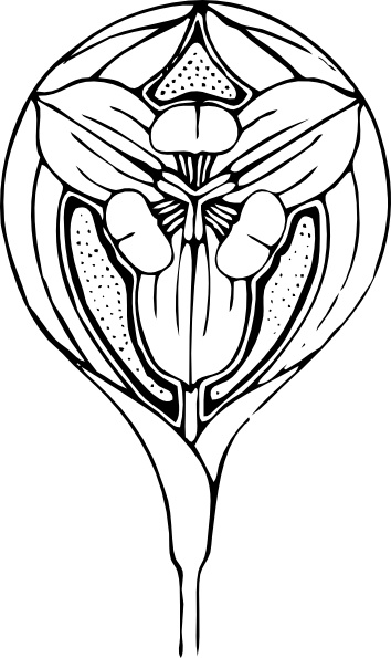 354x595 Tulip Flower Clip Art Free Vector In Open Office Drawing Svg