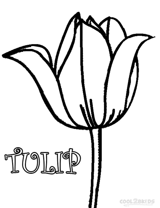 654x850 Tulip Coloring Pages