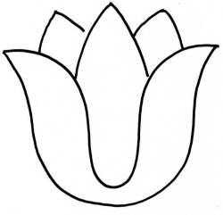 250x241 Tulip Outline Template