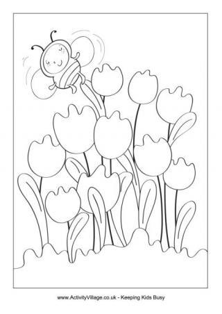 320x452 Tulips
