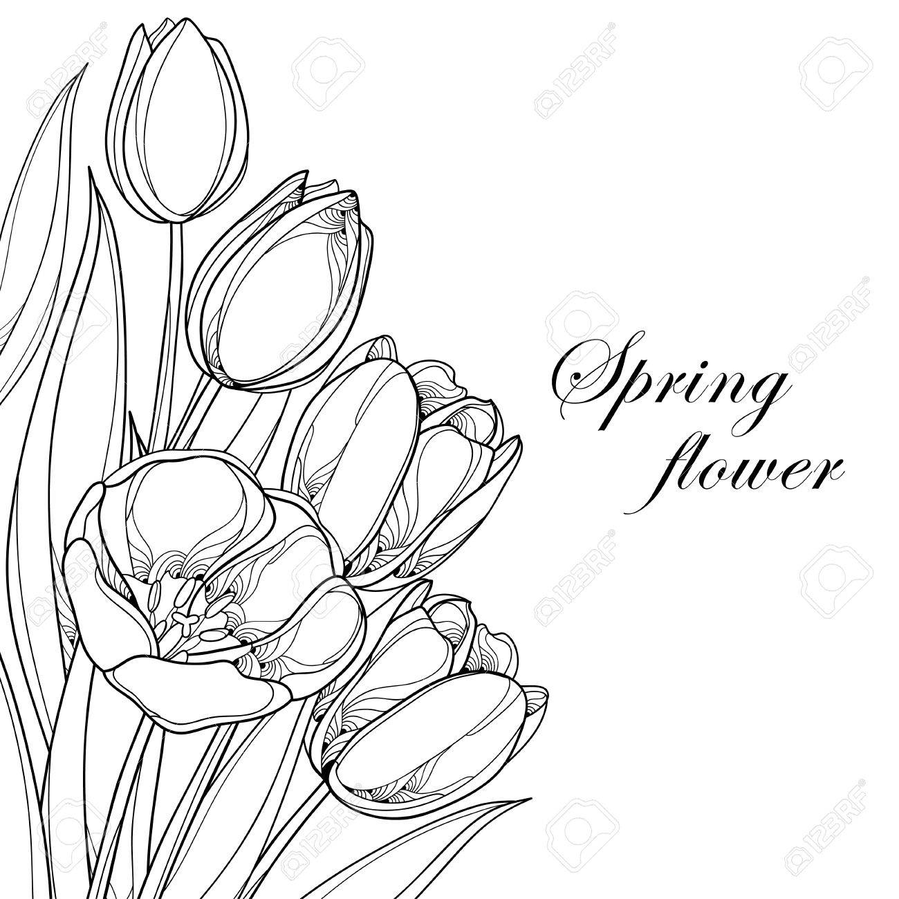 Outline images of bunch of flowers flowers healthy 1300x1300 vector bouquet with outline tulips flowers isolated on white tulip outline drawing at getdrawings free for personal use izmirmasajfo