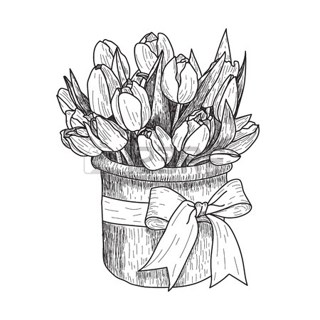450x450 Hand Drawn Decorative Tulips Isolated On White. Hand Drawn