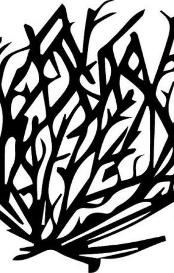 tumbleweed drawing at getdrawings com free for personal use rh getdrawings com tumbleweed clipart black and white