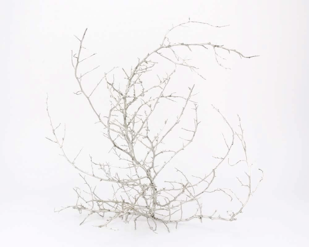 1000x800 Untitled Tumbleweed Xiii By Liz Glynn On Artnet