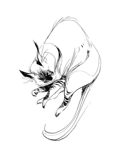 500x640 Ang Chen Art Sketches
