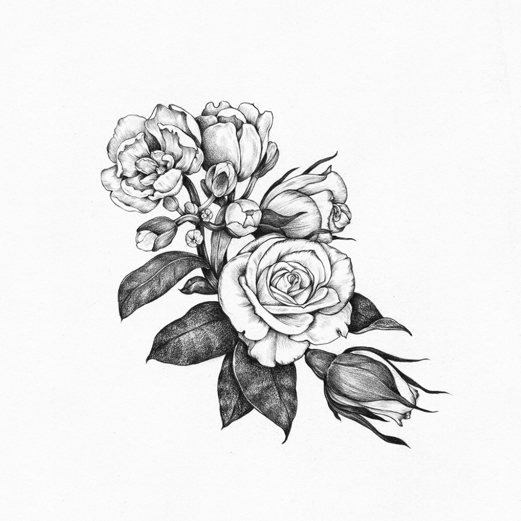 1024x1024 Tumblr Black And White Drawings Black And White Rose Drawing