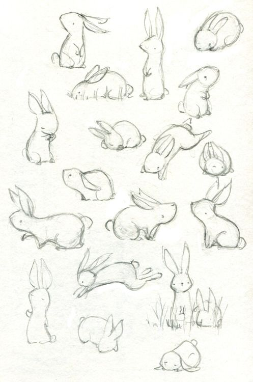 497x750 Drawn Furry Best Friend Tumblr