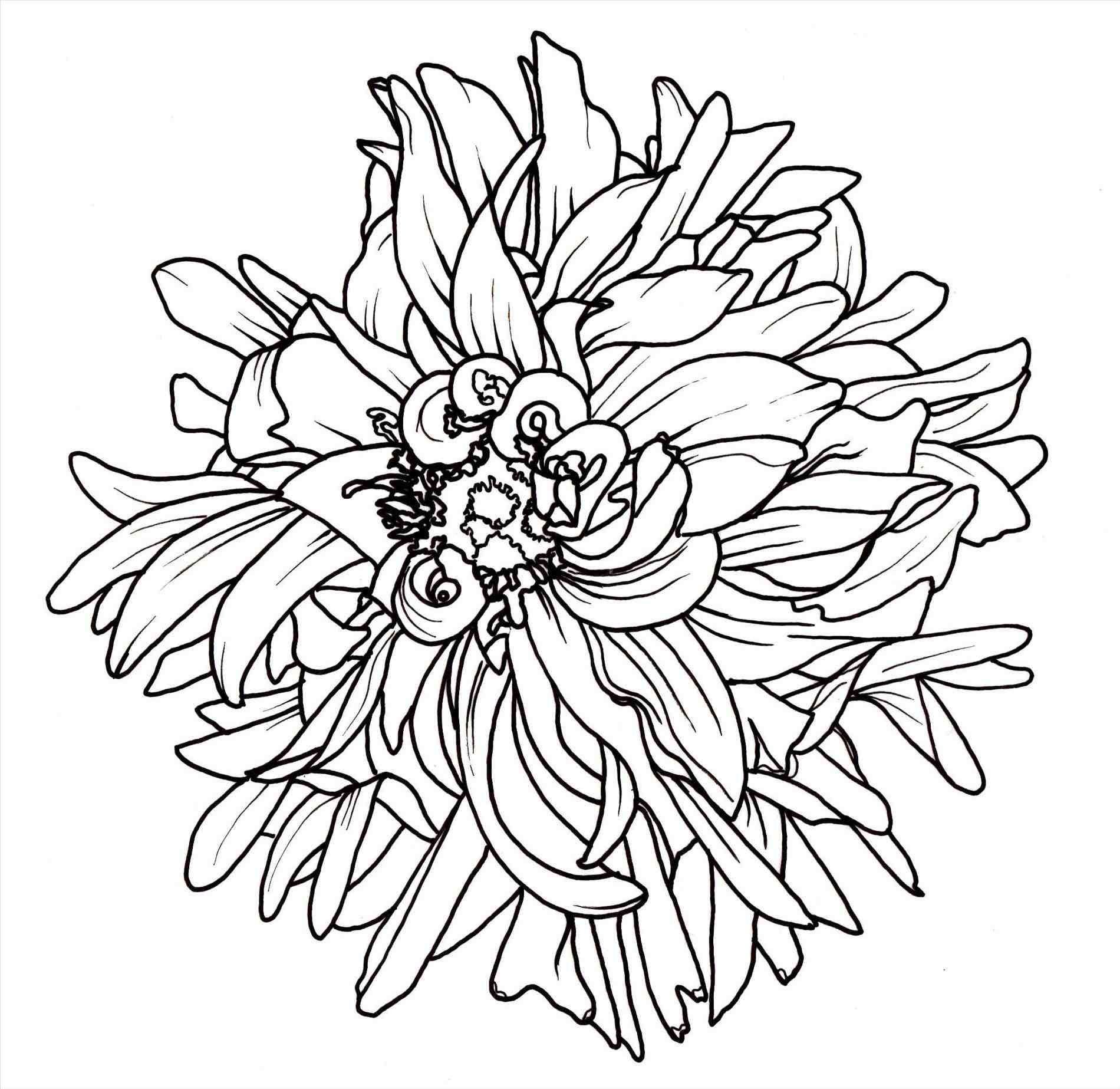 Tumblr flower drawing at getdrawings free for personal use 1900x1847 flower drawing easy tumblr mightylinksfo
