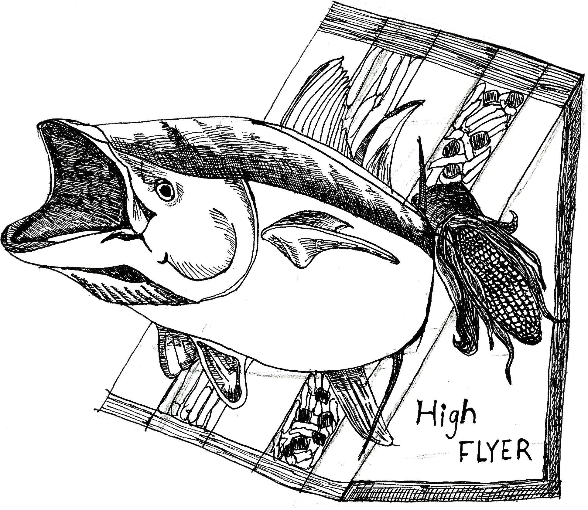 1936x1680 Tuna Fish Skye Wang Design Diary