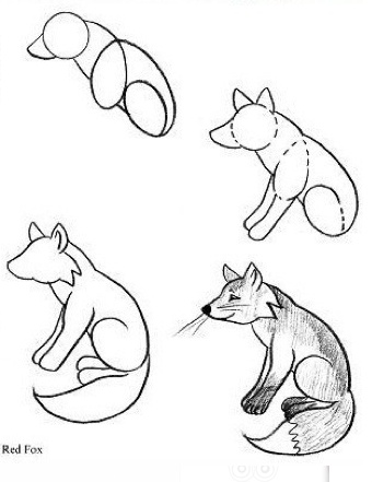 340x441 34 Best Drawing Images On Drawing Ideas, Animal Design