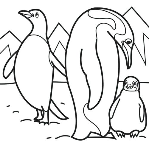 500x500 New Arctic Animals Coloring Pages And Arctic Animals Coloring