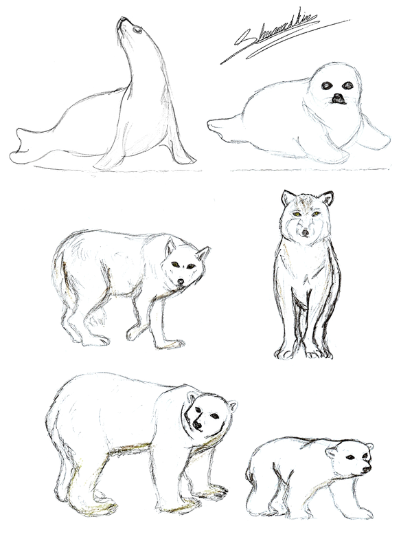 600x803 Tundra Animals By Shamashin