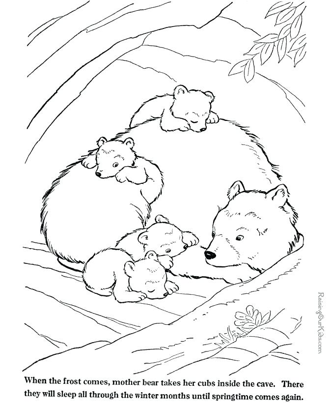 670x820 Arctic Animals Coloring Pages For Preschoolers Arctic Tundra
