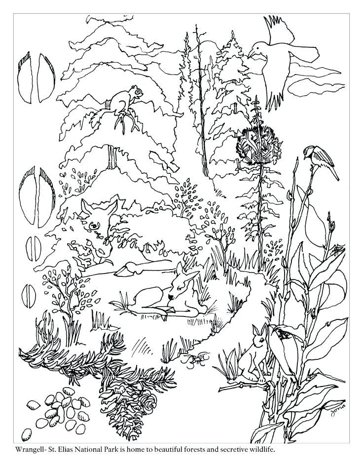 Tundra Drawing At Getdrawings Com