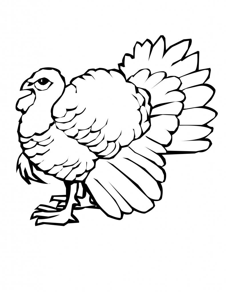 791x1024 Turkey Drawing Pictures