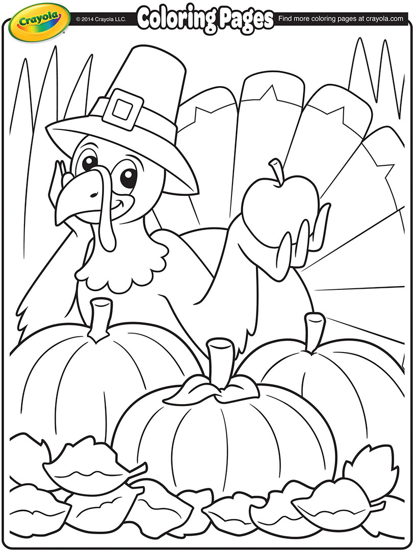 810x1080 Thanksgiving Turkey Cartoon Coloring Page