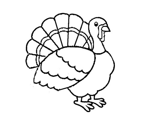 500x416 Turkey Coloring Pages For Kindergarten Coloring Page