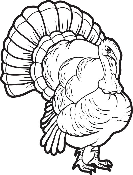 Turkey Drawing Kids at GetDrawingscom Free for personal use