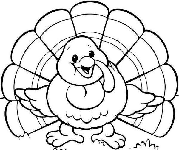 Turkey Drawing Template