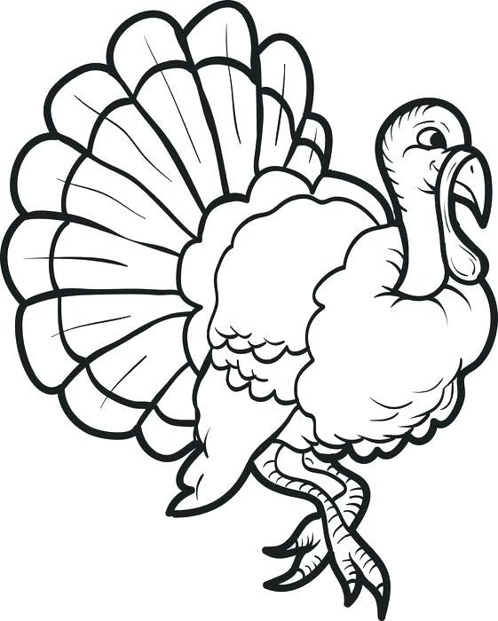 561x700 Turkey Coloring Pages Printable Free Free Printable Turkey