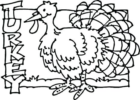 465x331 Turkey Feathers Coloring Pages Turkey Feather Turkey Drawing Clip