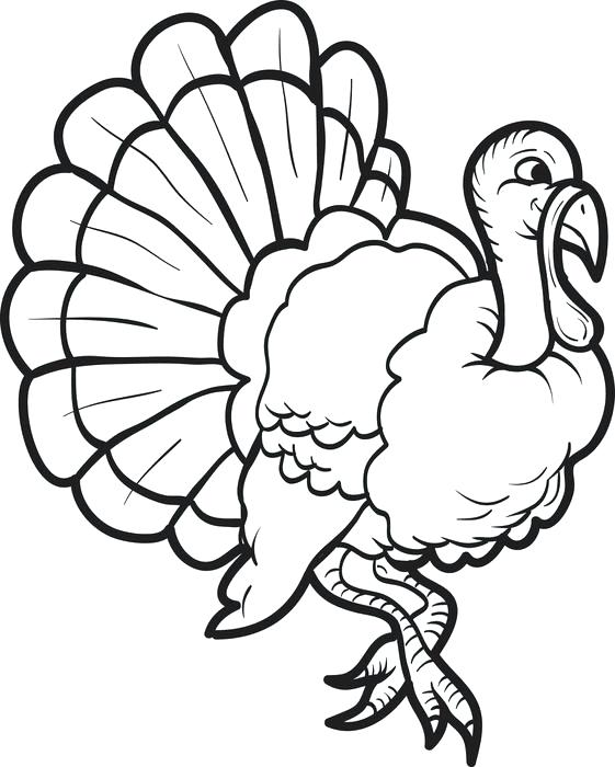 561x700 Coloring Page Of Turkey Turkey Coloring Page Coloring Page Turkey
