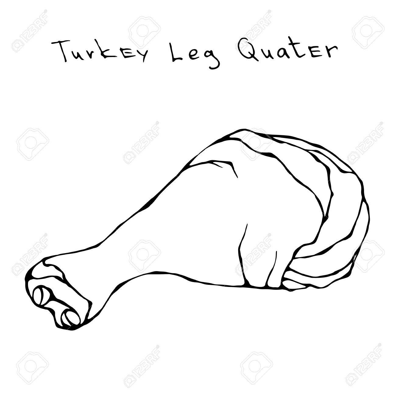 1300x1300 Raw Turkey Leg Quater. Fresh Fowl Meat Carcass. Realistic Vector