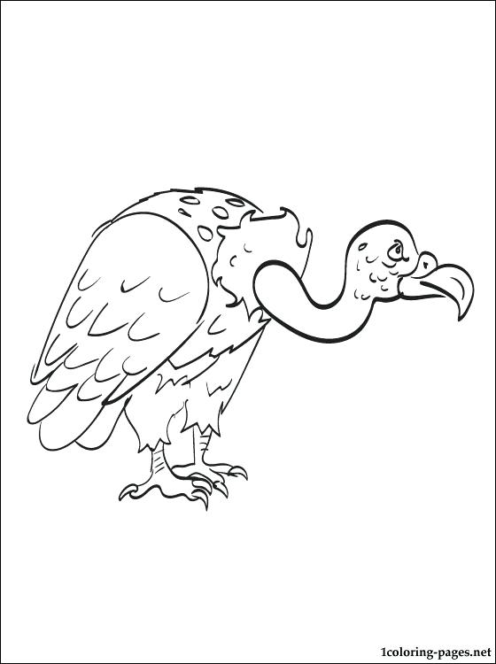 560x750 Vulture Coloring Page Cartoon Grinning Buzzard Vulture Coloring